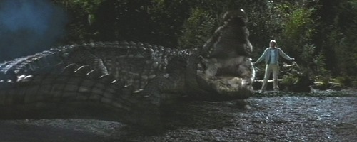 Crocodile in Lake Placid
